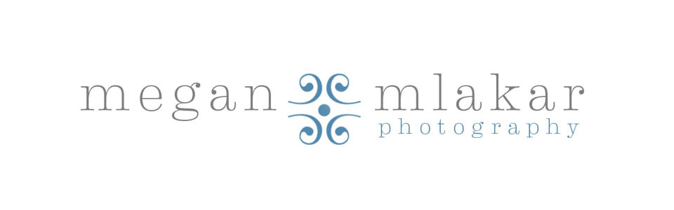 Megan Mlakar Photography | Chagrin Falls Photography logo